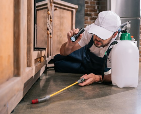 A pest control specialist laying on their side, holding a flashlight in one hand and a spraying wand in the other, looking for household pests under cabinetry.